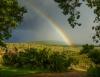 Zuid Afrika 2012 1-119-1